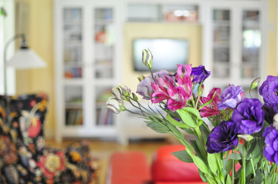 Family Home Ideas - living