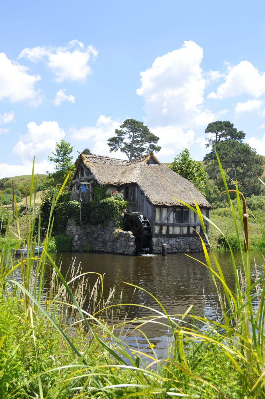 hobbiton movie set matamata - green dragon