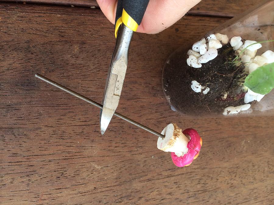 Easter Miniature Terrarium Sugar Free Nature Gift cutting the mushroom stem