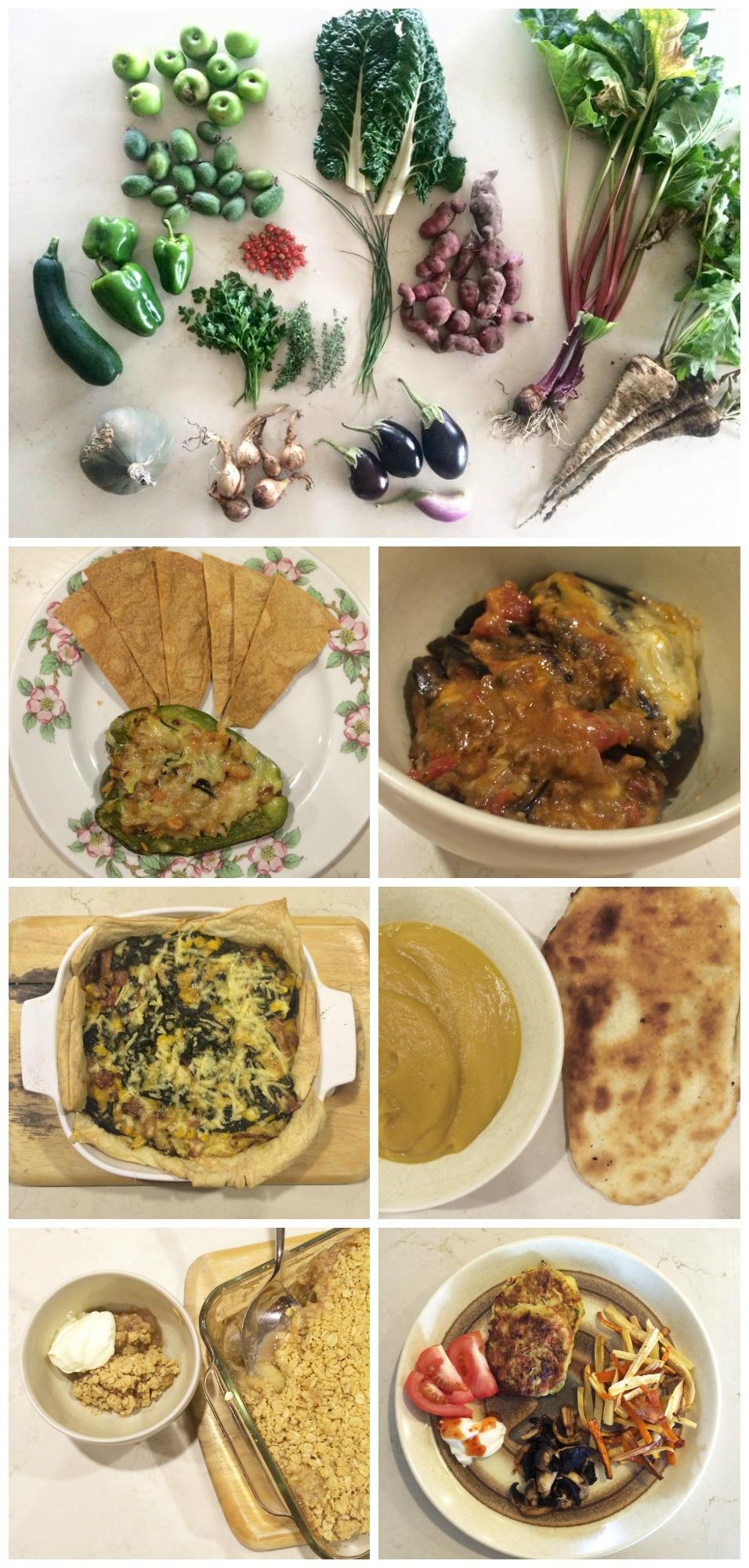 Organic Garden Meal Planning