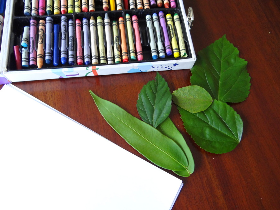 Leaf art ideas - get the kid to hunt for the perfect leaves for this activity