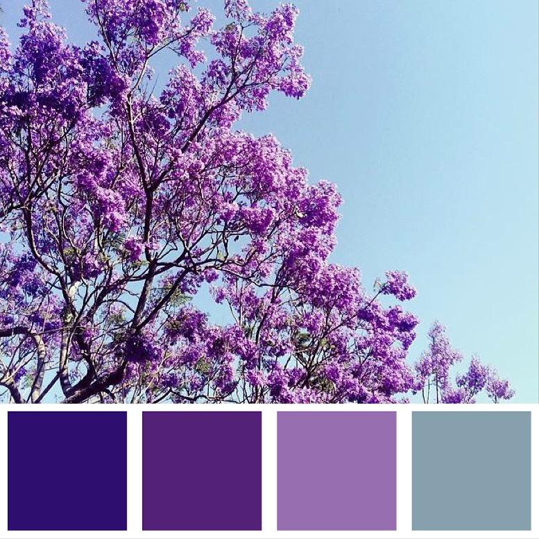 Purple Rain Colour Palette