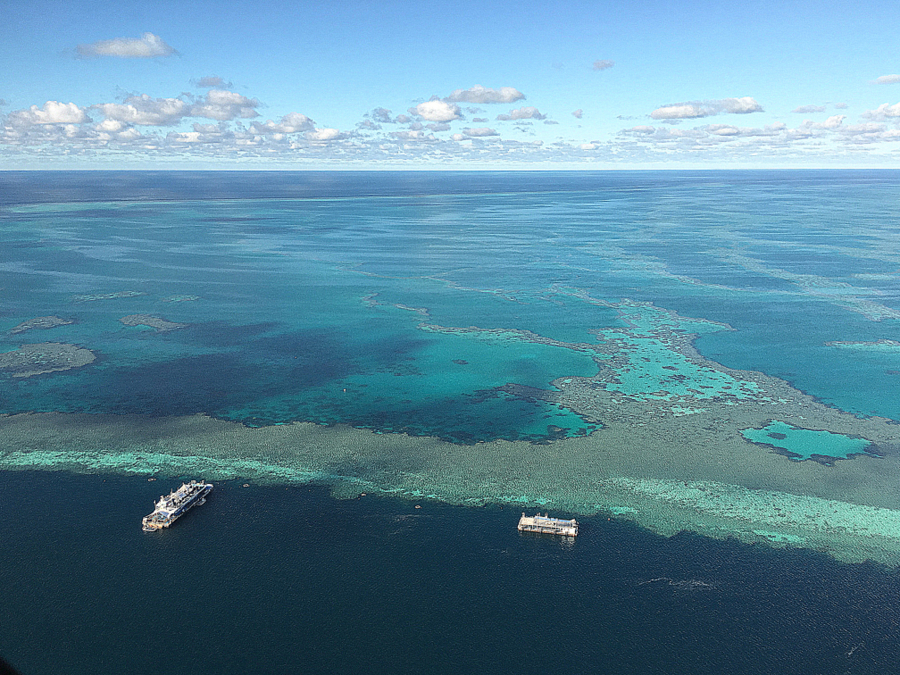 Great Barrier Reef off Whitsundays